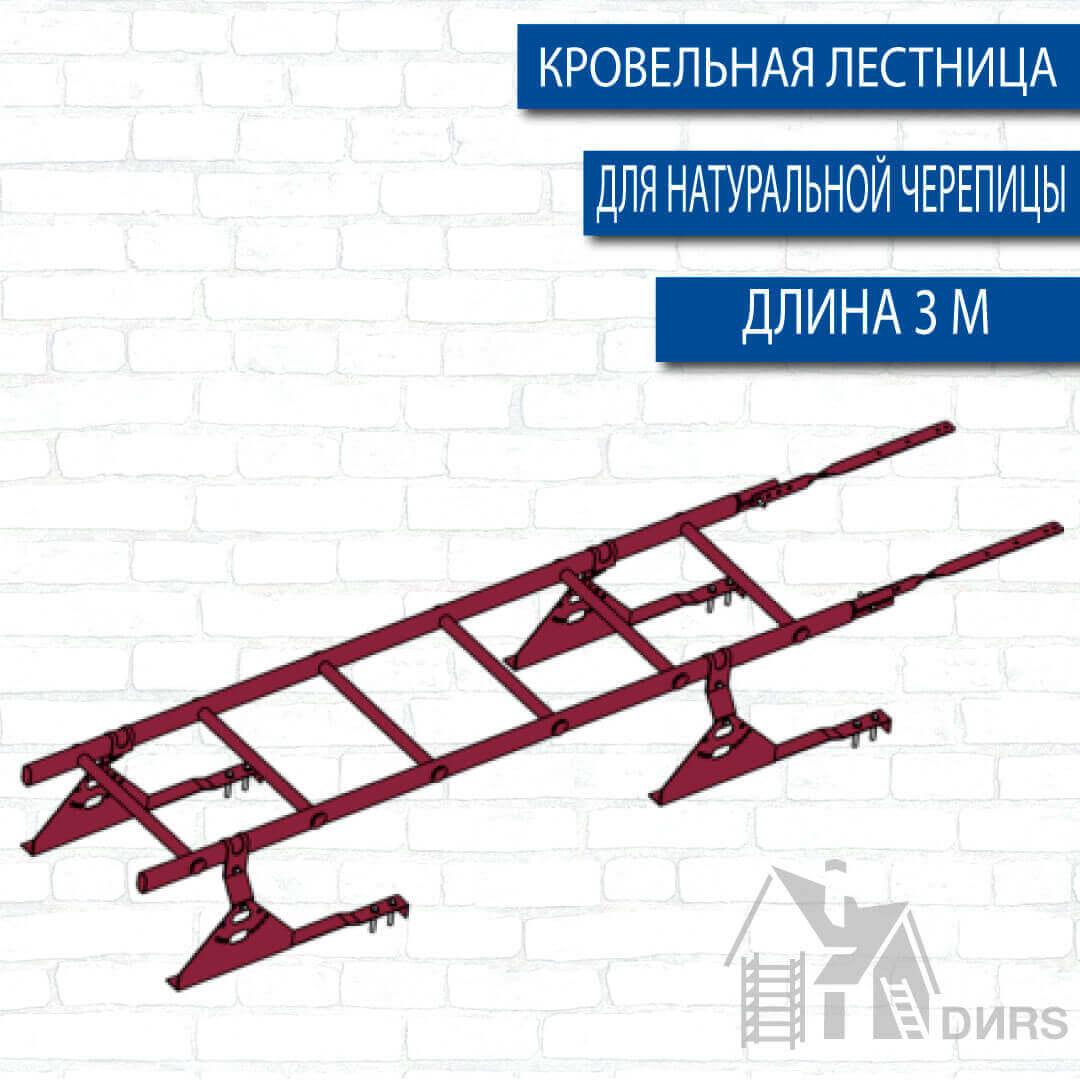 Лестница кровельная оцинкованная RAL 3 м